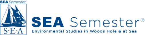 logo-home-new